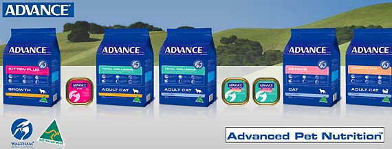 Advance Cat Banner