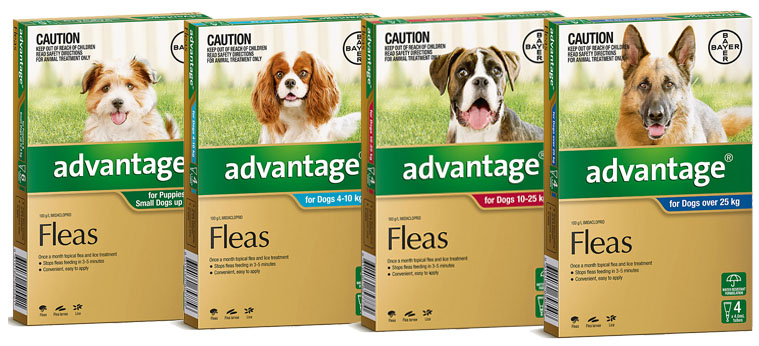Advantage for Dogs Banner