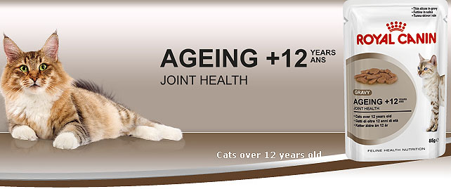 Royal Canin Ageing  Cat Food Reviews