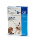 Capstar Blue For Dogs and Cats Under 11kg