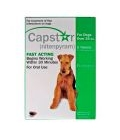 Capstar Green For Dogs Over 11kg