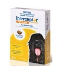Interceptor Medium Dogs 11-22kg