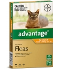 Advantage For Kittens & Small Cats up to 4kg Orange 4 pack