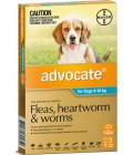 Advocate for Dogs 4-10kg 3 pack